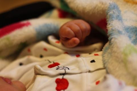 出産祝いの王道: 出産祝いの言葉 出産祝いの王道 出産祝いの贈り方やマ... 出産祝いの王道