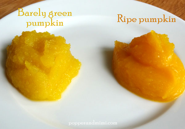 Don't roast unripened pumpkins.  The puree isn't as smooth, flavorful, or colorful.