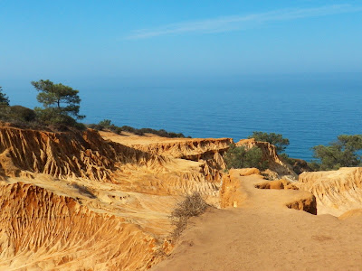 The nature preserve at Torrey Pines