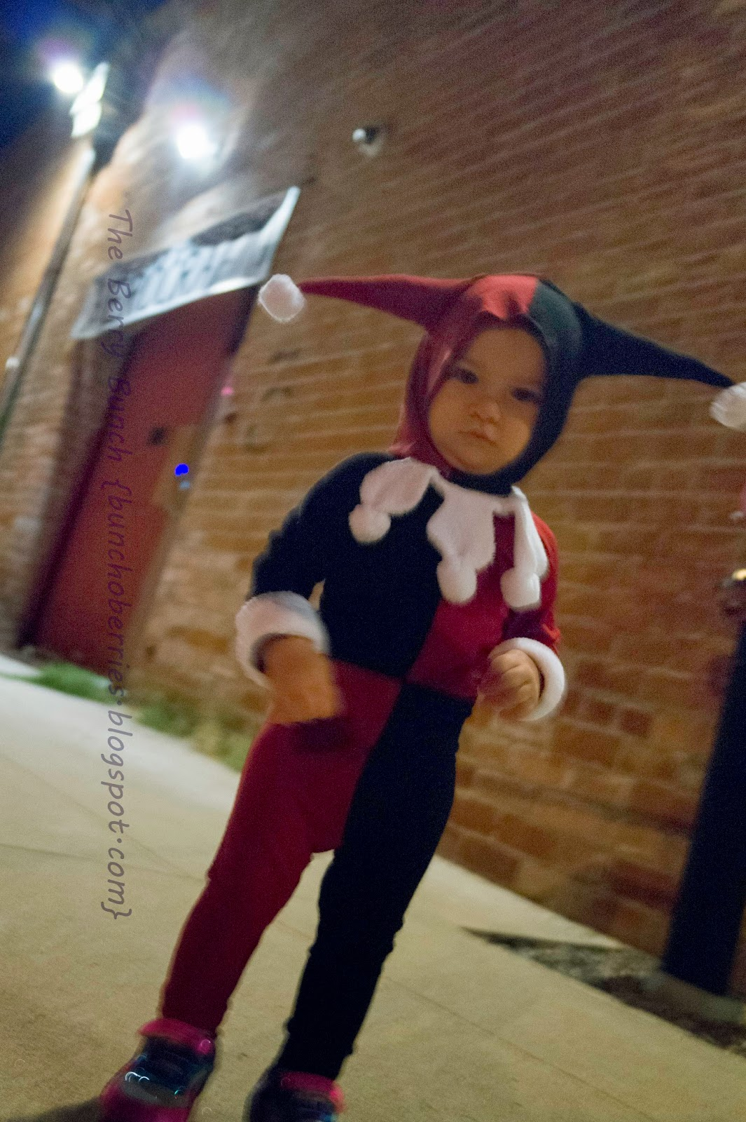 The Berry Bunch: Crafting Con: Batman's Harley Quinn