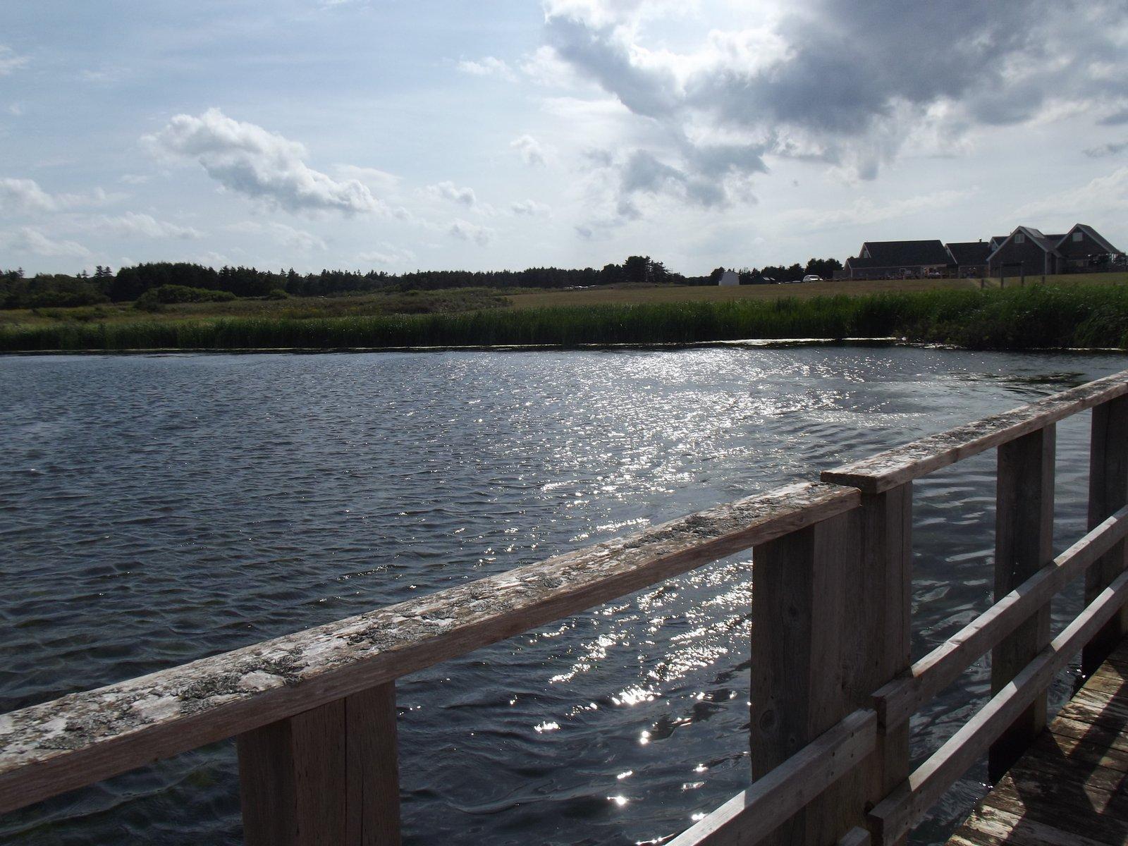 Cavendish beach shining waters