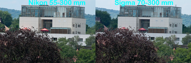 Nikon 55-300 vs Sigma 70-300 in teste _DSC8315