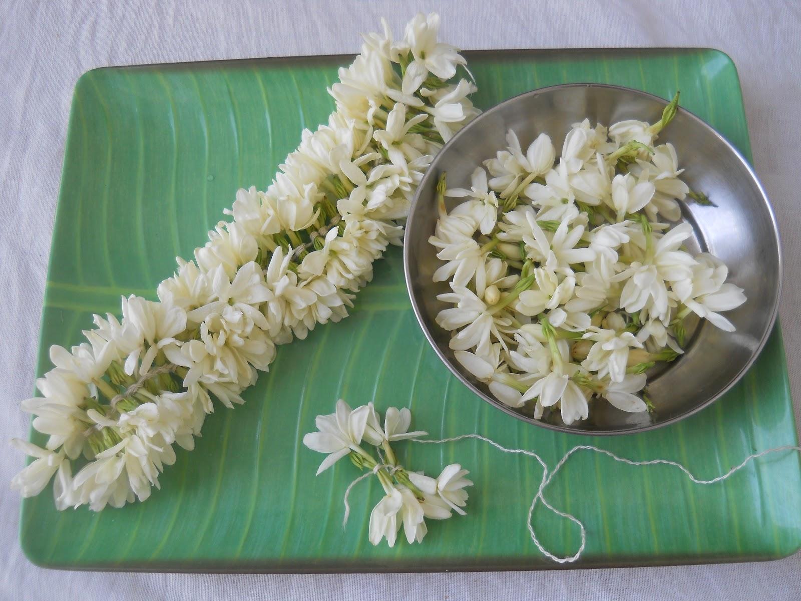 Brindas banter of malligai and mullai jasmine flowers izmirmasajfo