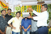 Guruvaram March 1 Movie launch photos-thumbnail-1