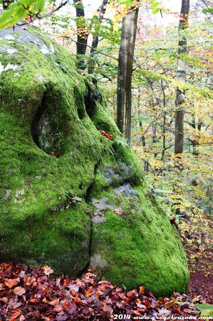 Le crâne vert, sentier bleu 2, forêt de Fontainebleau, (C) 2014 Greg Clouzeau