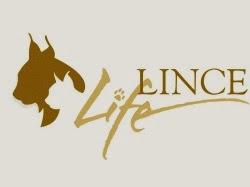 Life Lince