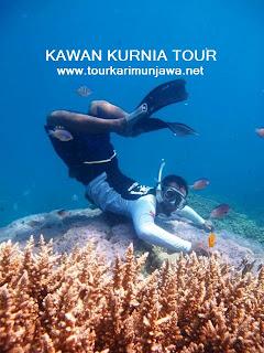 tour wisata tahun baru Karimunjawa