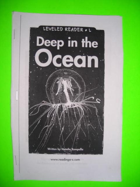 hoot book report