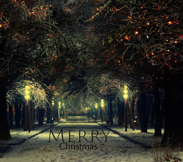 pictures of christmas cards
