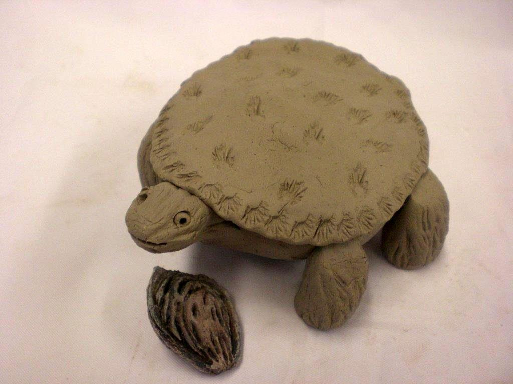 Oogly a box turtle that 39 s really a box for Clay making ideas