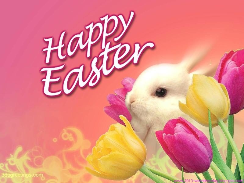happy easter bunny this was the list of the best latest and new easter ...