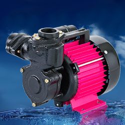 CRI SHINE-100 Self Priming Monoblock Pump (PSM-7) 1PH (1HP) Online, India - Pumpkart.com