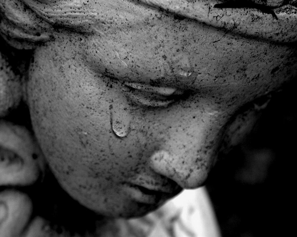 a net full of butterflies one solitary tear