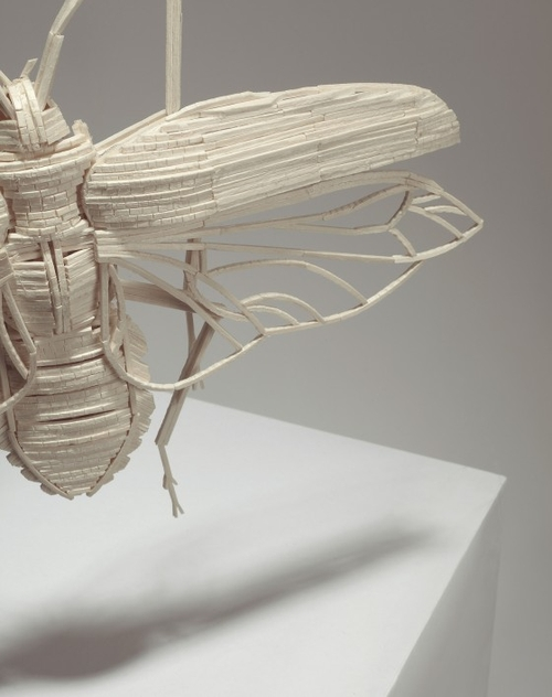 18-Stick-Insect-Kyle-Bean-Illustrator-Art-Director-who-makes-things-out-everything-www-designstack-co