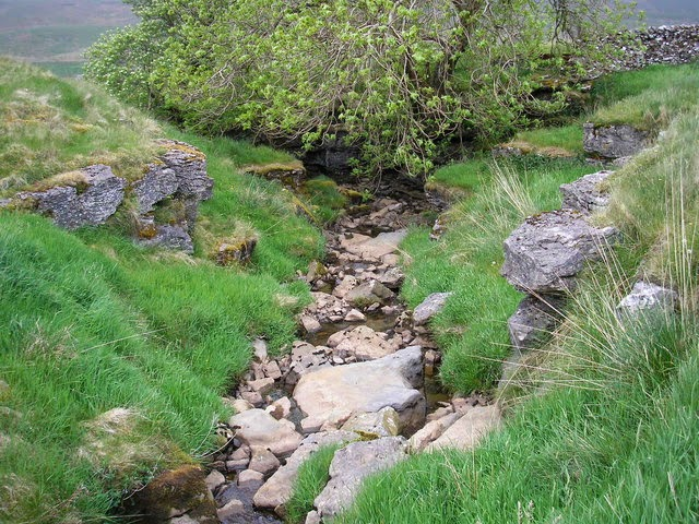 """The River Ure - geograph.org.uk - 186396"" by John Illingworth - From geograph.org.uk. Licensed under Creative Commons Attribution-Share Alike 2.0 via Wikimedia Commons - http://commons.wikimedia.org/wiki/File:The_River_Ure_-_geograph.org.uk_-_186396.jpg#mediaviewer/File:The_River_Ure_-_geograph.org.uk_-_186396.jpg"
