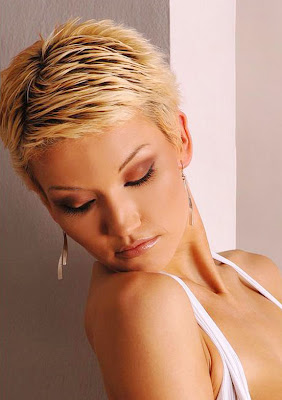Very Short Hairstyles For Women 2012 2013 Very Short Hairstyles 2013 ...