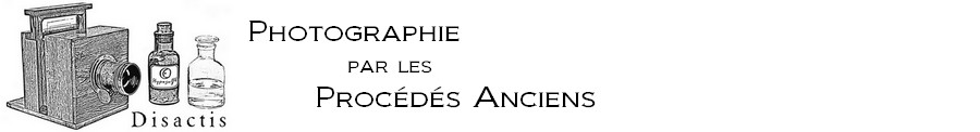 Disactis - Photographie par les Procédés Anciens