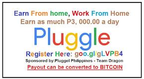 Pluggel Online