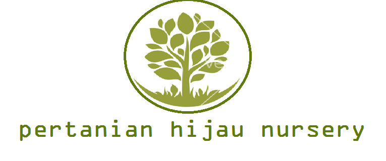 PERTANIAN HIJAU NURSERY