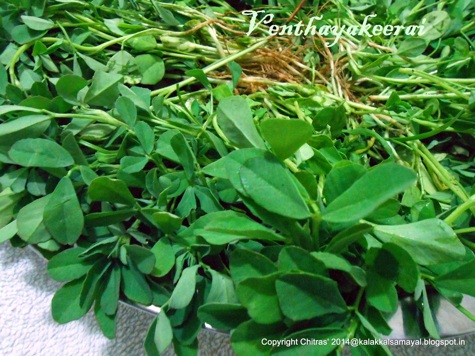 Venthaya keerai [ Fenugreek leaves ]