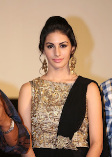 Actress Amyra Dastur Picture Gallery in Long Dress at Anekudu Audio Launch  83