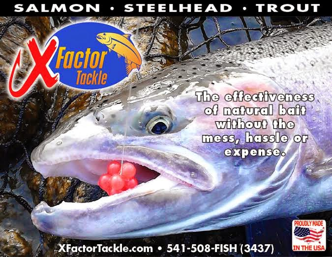 Salmon, Steelhead & Trout Gear