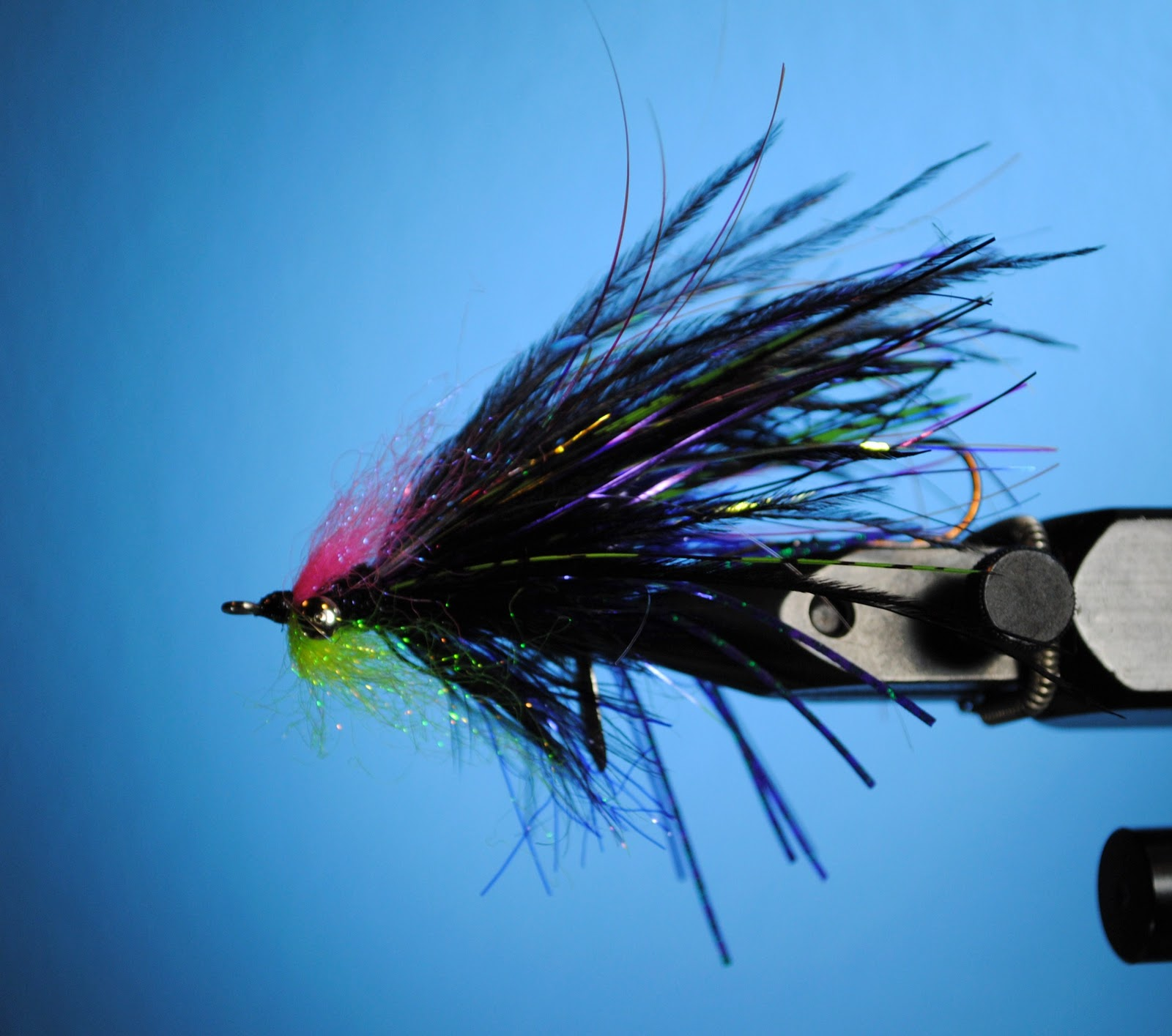 Steelhead alley fly tying the joker for Fish steelhead alley