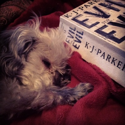 Murchie lays on a red blanket with one paw over his nose. Beside him is a paperback copy of Evil For Evil, bound in greyish watercolour paper with the title in large, cobalt blue letters.