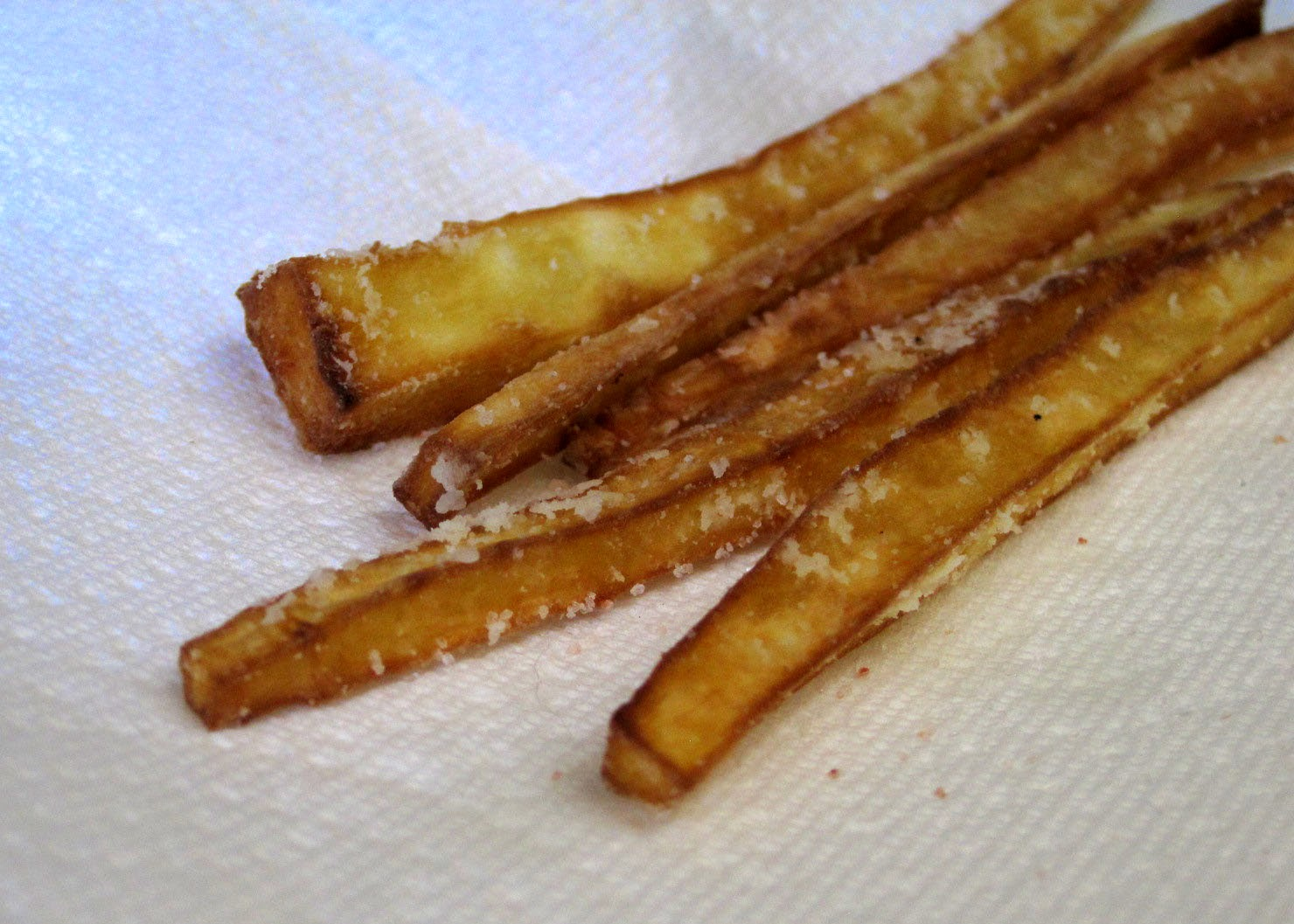 AIP autoimmune protocol, crispy parsnip fries recipe