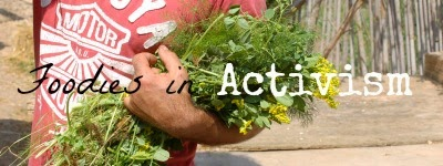 http://mealswithmorri.blogspot.it/p/foodies-in-activism.html