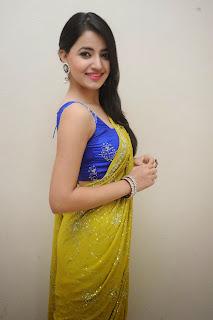 Ruksha Meer sizzling in saree 011.JPG