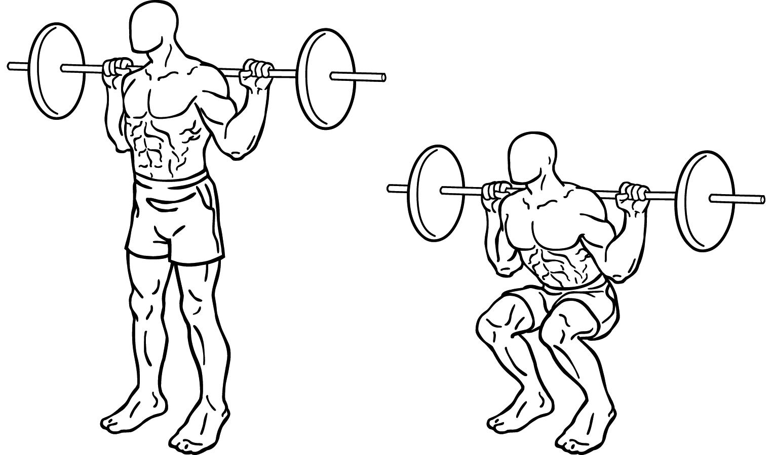 correct squat form diagram juanribon  : squat diagram - findchart.co