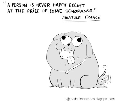quote a person is never happy except at the price of some ignorance anatole de france