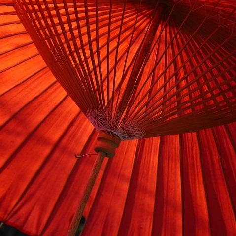 Q215 女性と傘