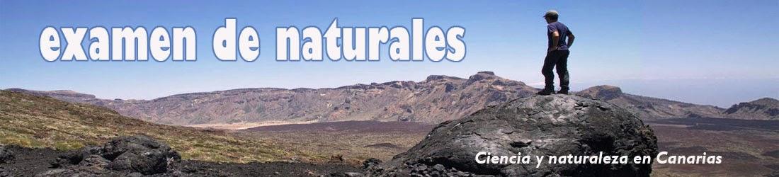 Examen de Naturales