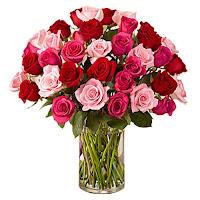 Ukraine roses
