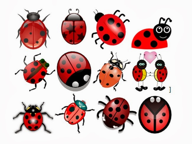 ladybug cliparts joaninhas