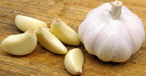 Khasiat Makan Bawang Putih