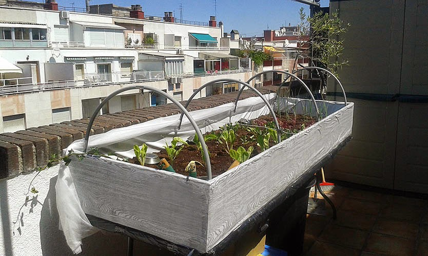 Mesa de cultivo terminada mi huerto urbano for Mesas de cultivo urbano