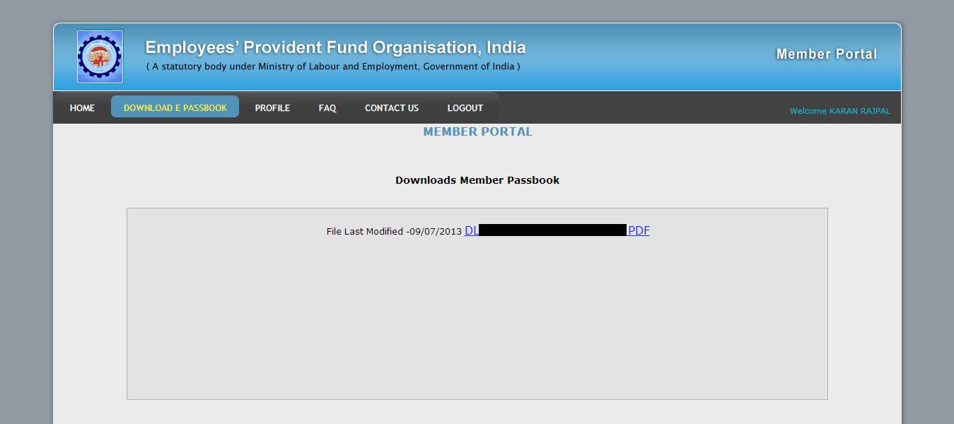 hul pdf citi group india