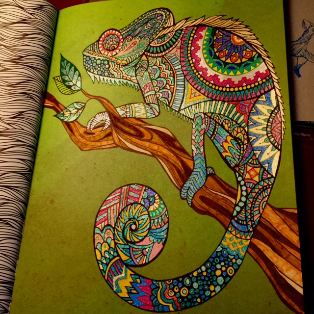Also Used Glitter And Metallic Pens For This Chameleon The Green Background Came With Page FYI
