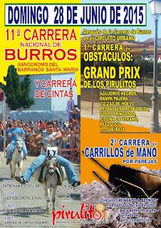 XI CARRERA DE BURROS Y MÁS