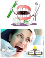diş bakımı, diş tedavisi, doğal diş bakımı, sağlık önerileri,