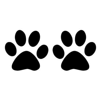 Real Cat Paw Print Cat paw prints l&r real cat