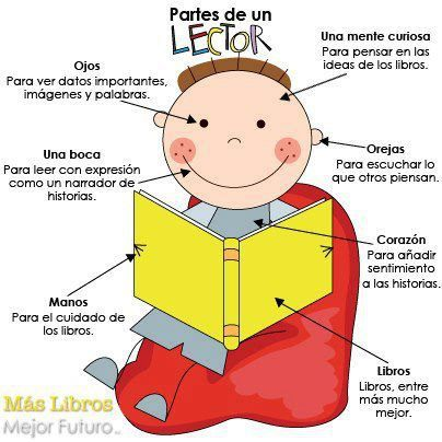 PARTES DE UN LECTOR