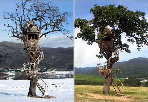 Funwithgallary top 8 most amazing tree houses for Most amazing houses
