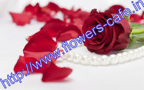flowers-cafe: Speedy Secrets Of buy flowers kolkata