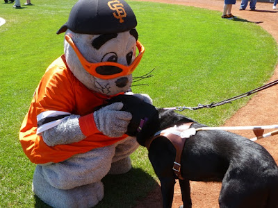 Giant's mascot Lou Seal makes friends with black Lab Niño