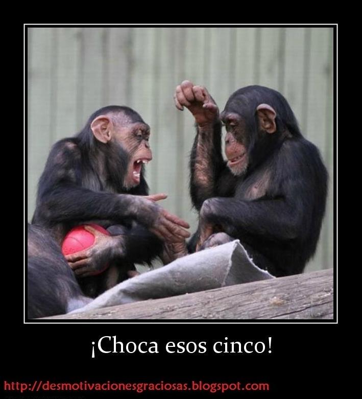 Desmotivaciones Chistosas + Amistad + Tristezas = Amor