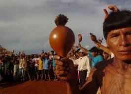 Questão Indígena